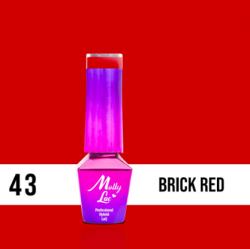 LAKIER MOLLY LAC ELITE WOMEN BRICK RED 5ml nr 43